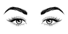Eyes With Eyebrows And Long Eyelashes. Sexy Look. Fashion Illustration.  Vector EPS 10.