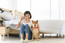 Young Asian Woman Relaxing And Playing With Three Dogs (brown Shiba Inu, White Shiba Puppy And White Maltese)in Bedroom At Home, Cheerful And Nice Couple With People And Pet. Pet Lover Concept