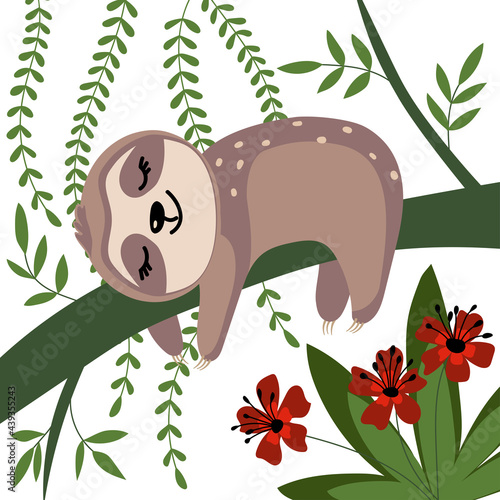Fototapeta premium Sloth sleeping on a branch in a beautiful forest. Cute vector illustration isolated on white background. Baby shower card, poster, decoration, sticker.