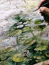 Water Lilies Watercolor Illustration
