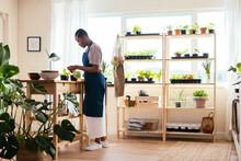 Black Female Tending Plants At Home