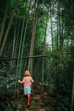 Little Girl Walking In A Bamboo Forest