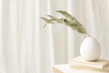 Green Leaves In White Vase