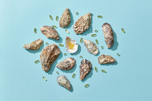 Omega Vitamins In Oysters Shell