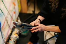 Artist Hand Holding A Bunch Of Brushes I Her Hands