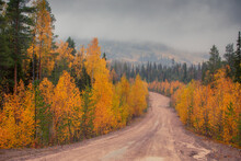Dirt Road Through Autumn And Foggy Forest In National Park