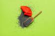 Leinwandbild Motiv Scoop with poppy seeds and flower on color background