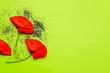 Leinwandbild Motiv Poppy seeds and flowers on color background