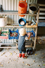 Toddler Boy Looking At The Items In The Garden Shed