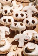 Mushrooms Of Death