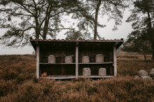 Beehive Storage In Autumn On Apiary