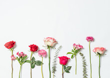 Still Life Of Flowers On White Background