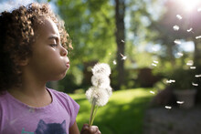Girl Blows Dandelion Seeds In Back Yard