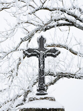 Frozen Cross