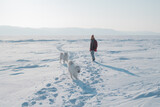wintertime fun: young woman and her dogs