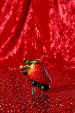 Ant Carrying A Ripe Strawberry