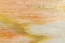 Petrified Wood Rock In Pastel Color Tones