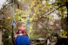 Boy On Rope Swing In Back Yard