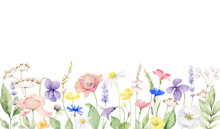 Watercolor Vector Banner Of With Wildflower Flowers And Leaves.
