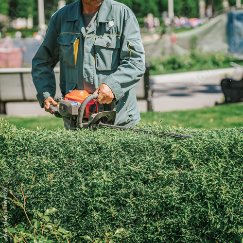 Canvastavla Abstract gardener in green working suit cutting bushes with an electric Trimmer