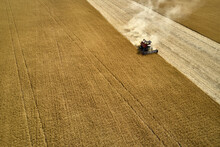 Harvesting By Combine On Gold Field Of Ripe Cereals