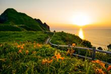 佐渡島の景勝地大野亀のカンゾウと日本海の夕陽