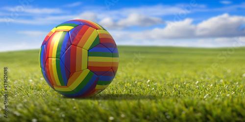 Carta da parati Rainbow flag football soccer ball outdoors on grass