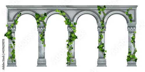 Slika na platnu Stone arch vector illustration, marble roman antique pillar colonnade, green ivy leaves, climber plant