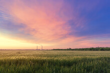 Sunset On A Wheat Field, Landscape Fields Of Ukraine Agriculture