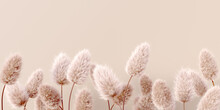 Dry Fluffy Flowers Beige Pastel Color Boho Background 3d Rendering. Abstract Pampas Grass Isolated - Calm Floral Wallpaper.
