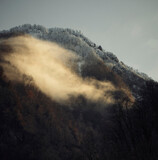 Fog over forested hill on cloudy day