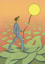 Walking The Sun In Spring