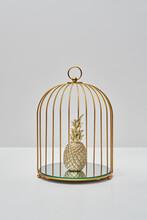 Golden Pineapple In Birdcage