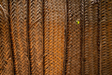 Palm Leaves Wall Panel