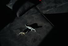 Dinosaur Toys With Shadows From Sunlight