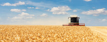 Scenic Front View Big Modern Industrial Combine Harvester Machine Reaping Gather Golden Ripe Wheat Cereal Field Meadow On Bright Summer Day. Agricultural Yellow Field Machinery Landscape Background