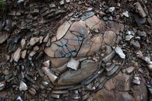 Cracked Stone Close-up