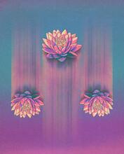 Flying Lotus Flowers Illustration