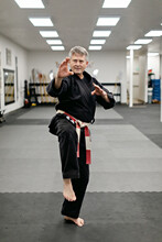 Martial Arts Master Practicing Moves