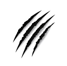 Tiger Claw Mark Scratches Vector Slash Traces Of Wild Cat Animal Paw And Talons. Scary Horror Monster, Lion And Bear Torn Marks Of Black Scratches With Rough Edges, Halloween Themes