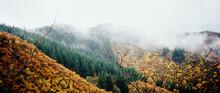 Autumnal Mountain Scene
