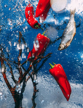 Bright Stillife With Peppers And Fish