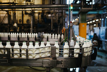 Plastic Milk Bottles In A Milk Factory