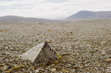 Large Stone in Gravel Road