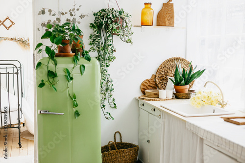 Fotografia retro design kitchen with white sink and green refrigerator in a wooden rustic h