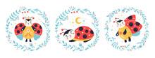 Ladybug Ladybird Vector Set In Cartoon Style