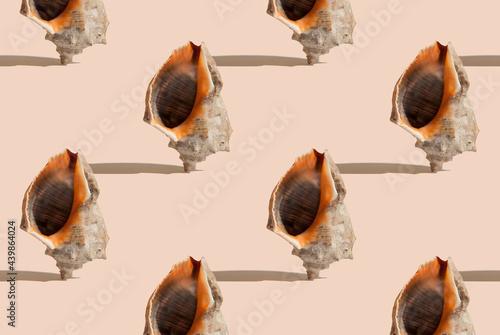 Billede på lærred Summer pattern with sea shell on beige background