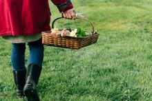 Woman Walking With Basket Of Tulips