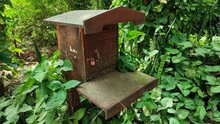 Abandoned Mailbox In The Garden