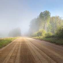 An Empty Dirt Country Road (alley) Through The Green Forest And Fields In A Fog At Sunrise. Pure Morning Light. Early Autumn In Latvia. Fall Season, Seasons, Travel, Vacations, Eco Tourism Theme